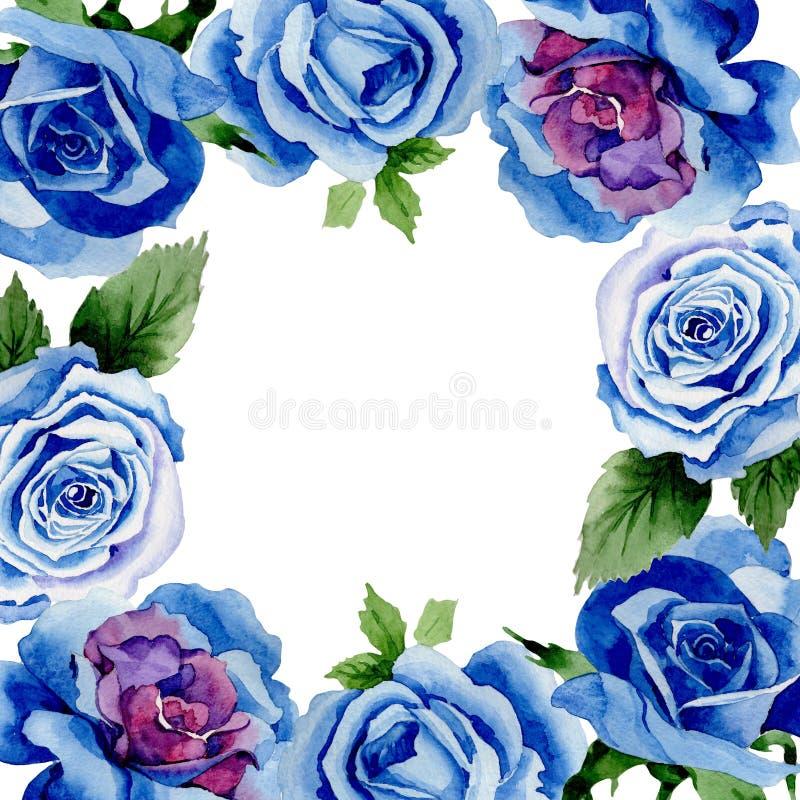 野花蓝色玫瑰在水彩样式的花框架 皇族释放例证