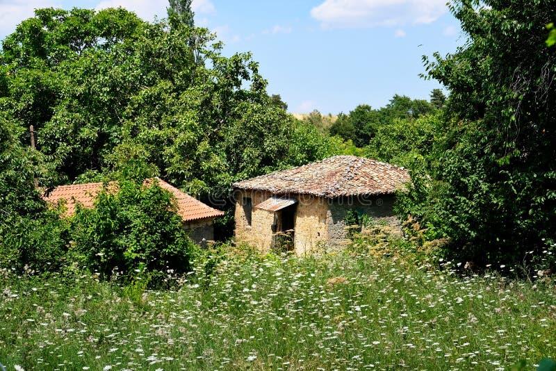野花领域的,希腊老希腊村庄议院 库存图片