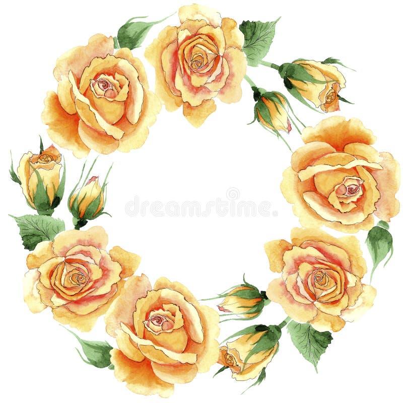 野花黄色茶杂种玫瑰开花在水彩样式的花圈 皇族释放例证