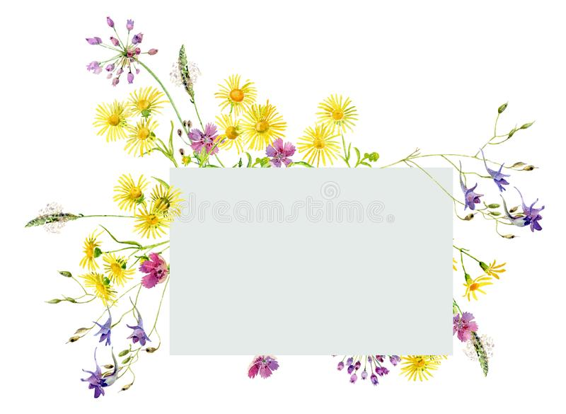 野花,狂放的康乃馨,春黄菊水彩花束  皇族释放例证