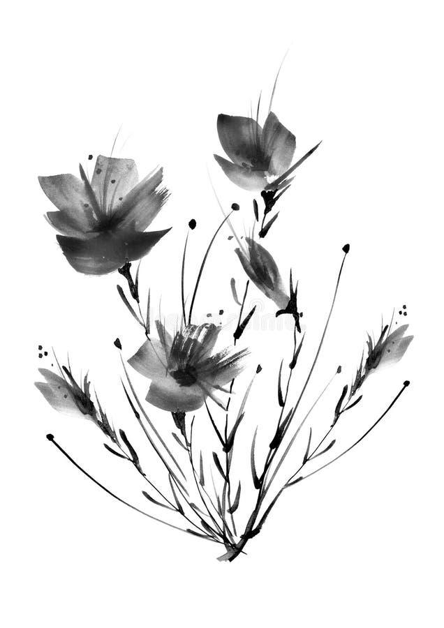 野花,领域,庭院-百合,剪影鸦片,玫瑰 向量例证