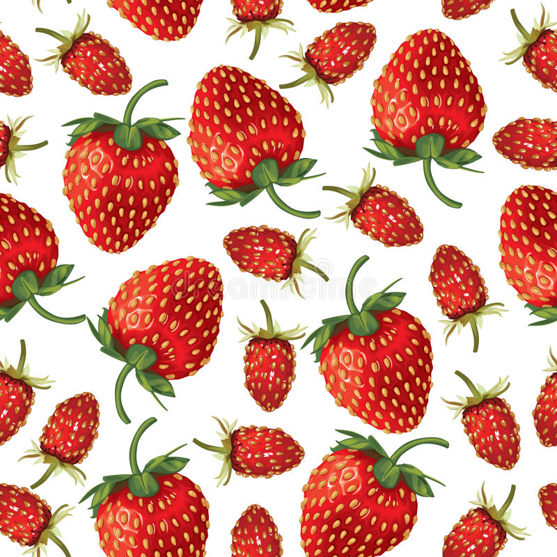 野草莓和无缝草莓的样式 库存例证