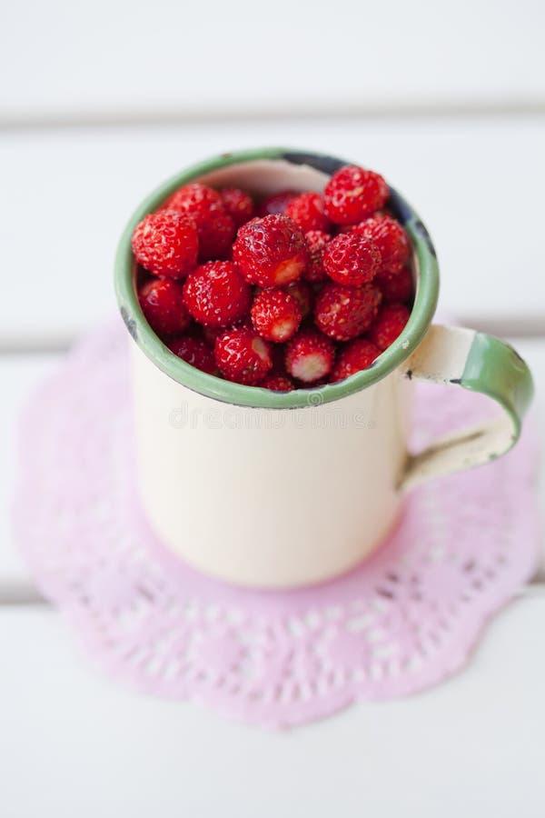 野草莓 免版税库存照片