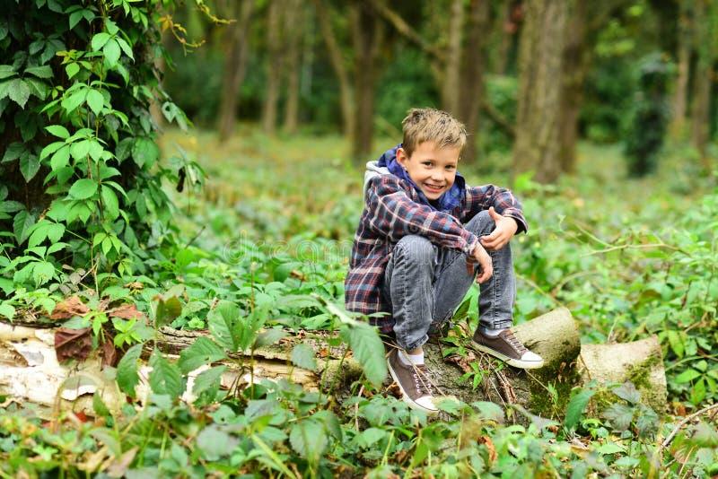 野营与我的Go 小孩子享受野营 小男孩坐树 可爱的孩子在森林放松 我的爱好是 免版税图库摄影