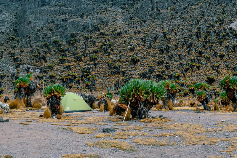 野营反对山背景,肯尼亚山国家公园 图库摄影