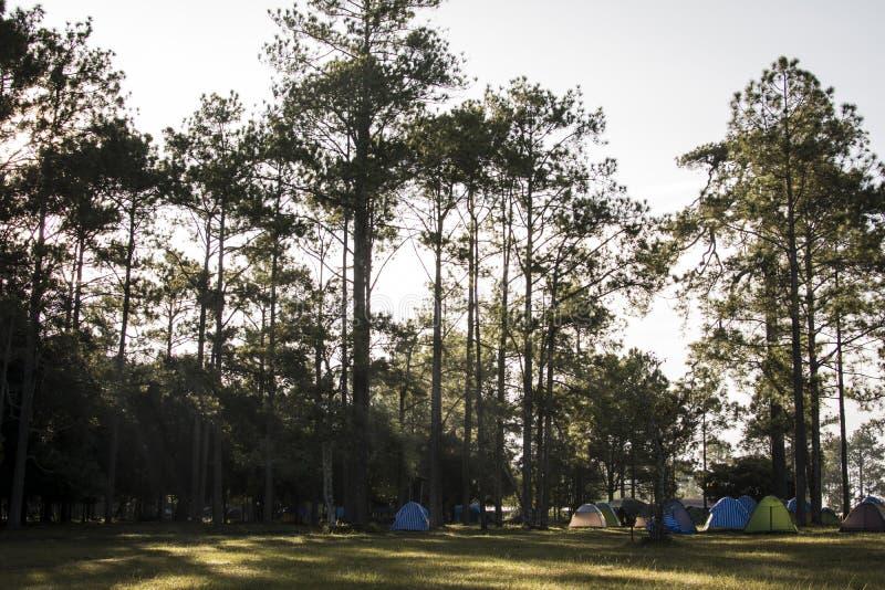 野营和在山顶部的五颜六色的帐篷在假期远航 库存照片