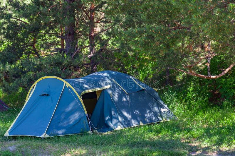 野营在具球果绿色树树荫下的帐篷在一个晴朗的夏日 极限运动和室外休闲没有人 免版税图库摄影
