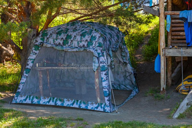 野营在具球果绿色树树荫下的帐篷在一个晴朗的夏日 极限运动和室外休闲没有人 免版税库存图片