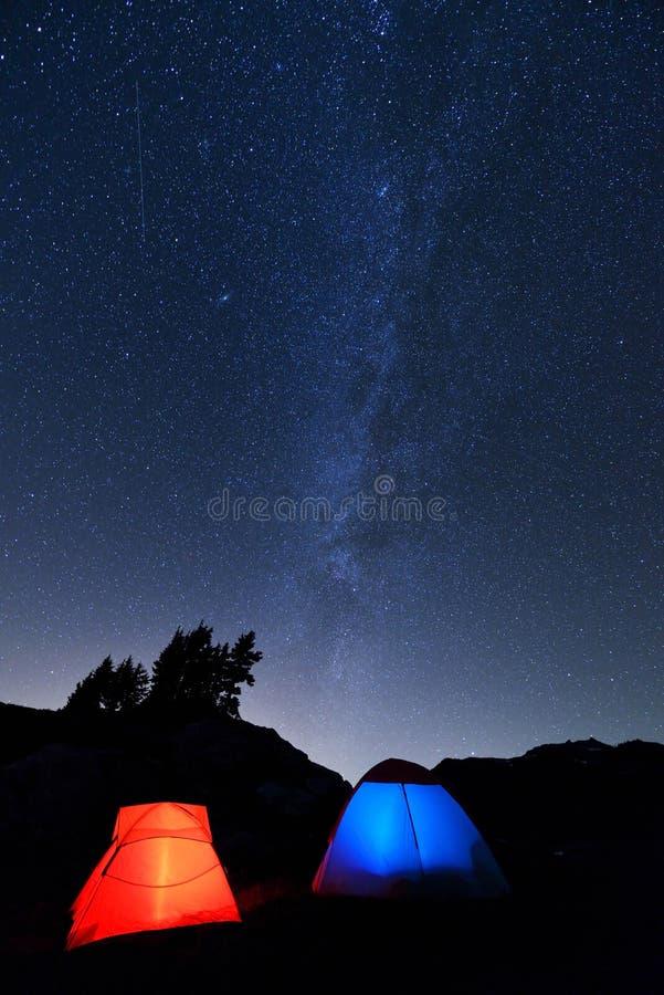 野营在黄色翠菊小山 库存图片