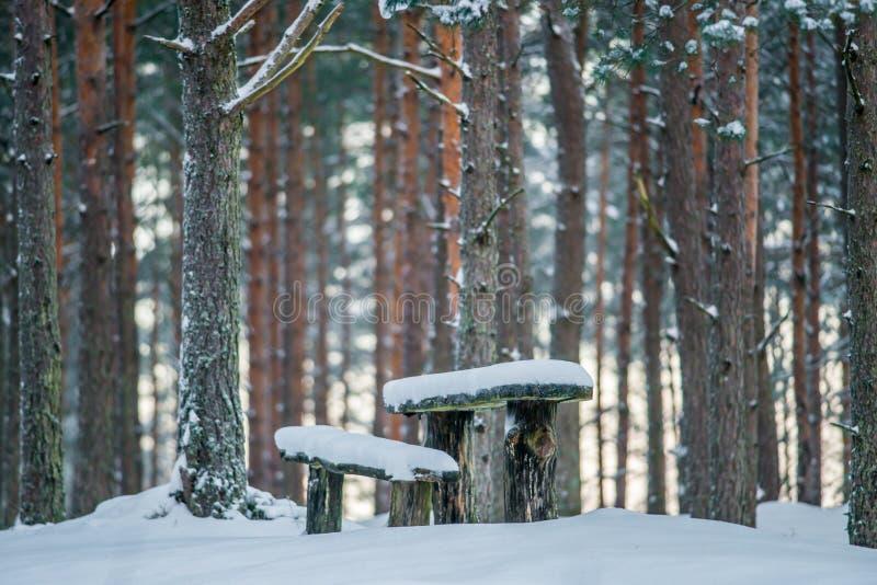 野营的地方在森林里,冬天日出 免版税库存图片