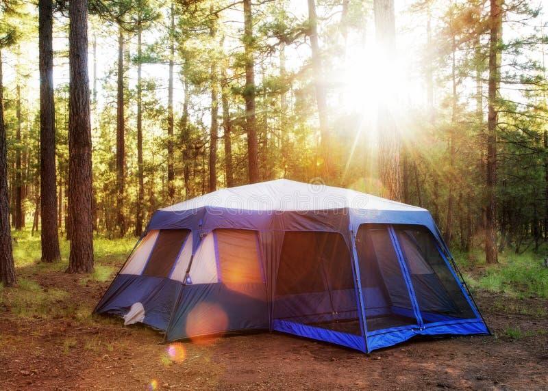 野营的帐篷在日出的森林 免版税库存图片
