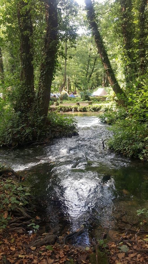野营的河natur 免版税库存照片