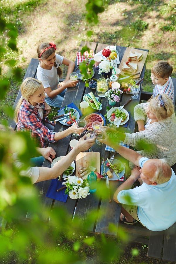 野餐在庭院里 库存图片