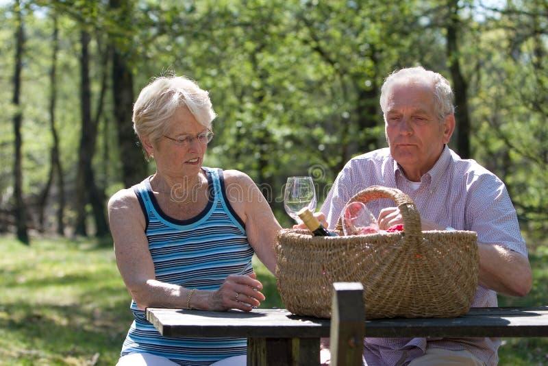 野餐夏天 库存图片