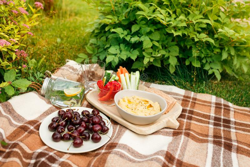 野餐外面在草柳条箱子的,方格的pl公园 免版税库存照片