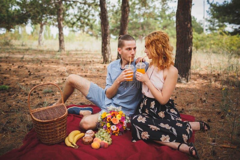 野餐时间 爱和柔软,约会,浪漫史,生活方式概念 野餐-年轻夫妇在春天草甸 免版税图库摄影
