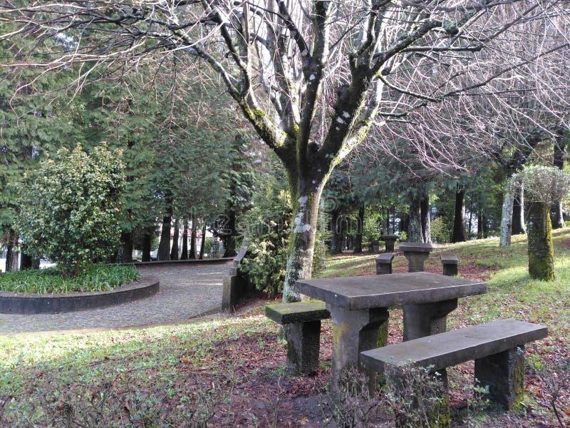 野餐桌在秋天 免版税图库摄影