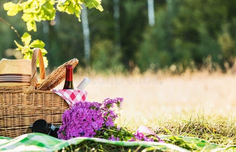 野餐用红色和白葡萄酒 免版税库存图片