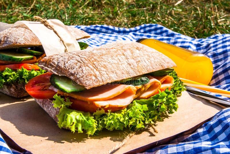 野餐用自创三明治 免版税库存照片