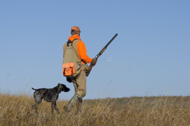 野鸡狩猎 库存图片