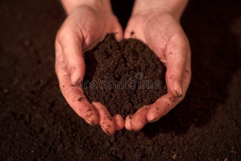 质量土壤在女性花匠手上 免版税库存照片