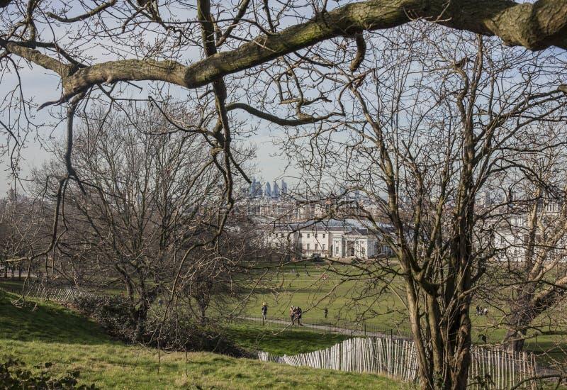 金丝雀码头看法从格林威治公园的;赤裸树 库存图片