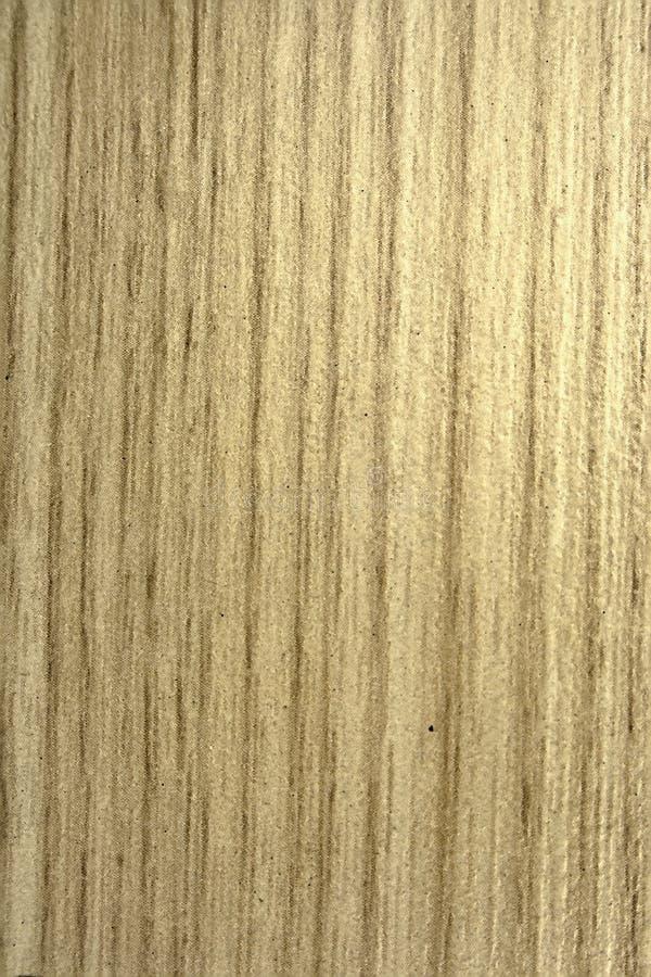 金冷杉,构造老木头 库存图片
