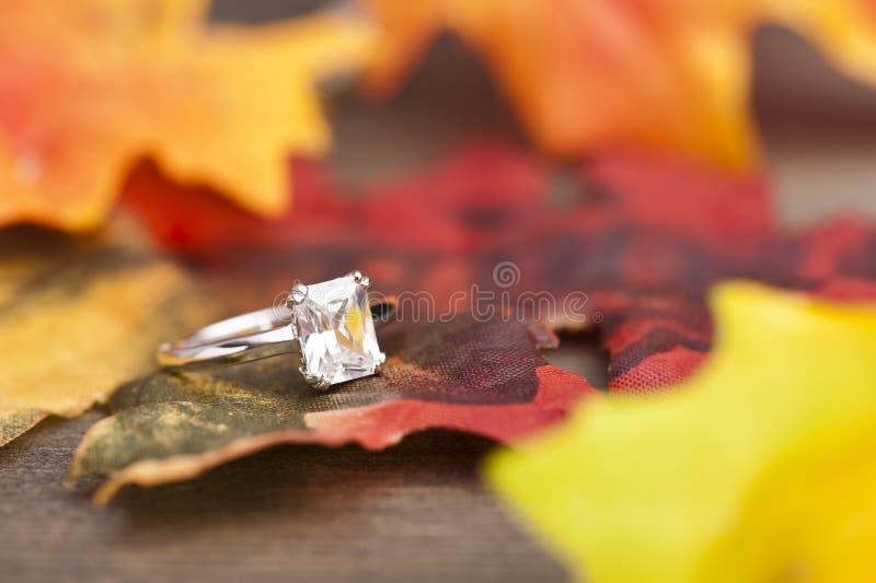 金刚石定婚戒指 库存图片