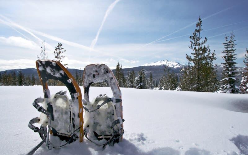金刚石高峰雪靴 免版税库存照片
