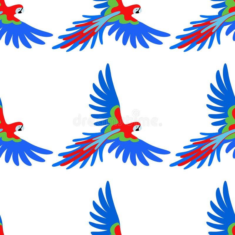 金刚鹦鹉鹦鹉无缝的样式 皇族释放例证