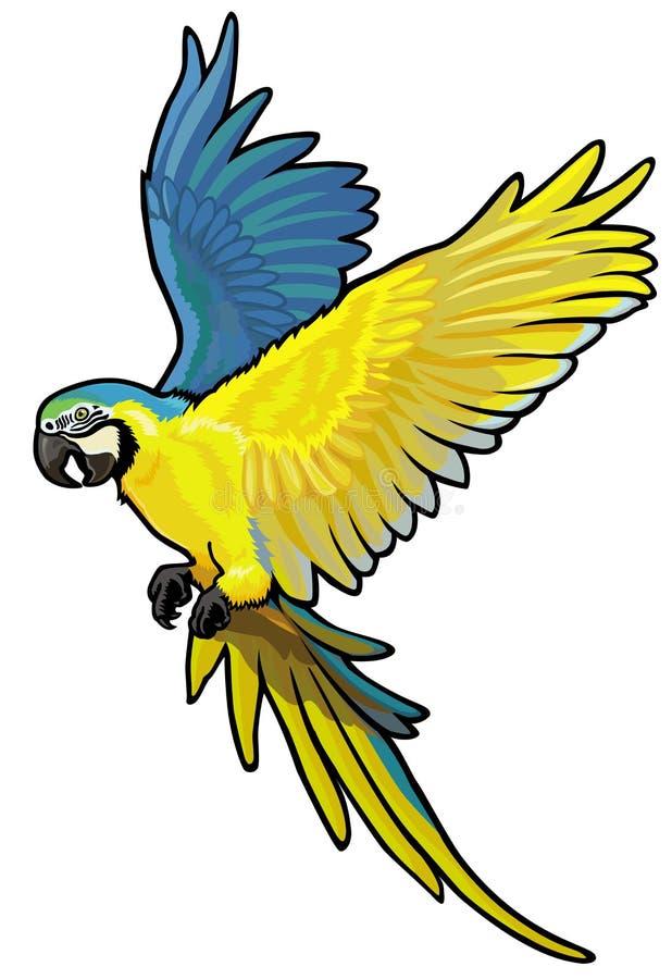 金刚鹦鹉 向量例证