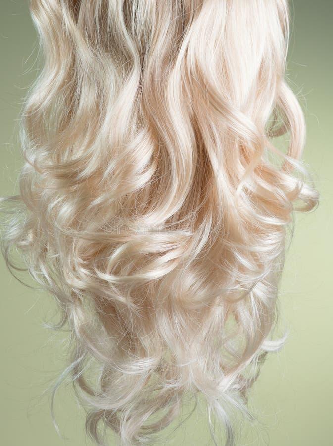 金发 漂亮的健康长卷发金发特写质感 染色波纹白发背景、着色、延伸、固化 库存照片
