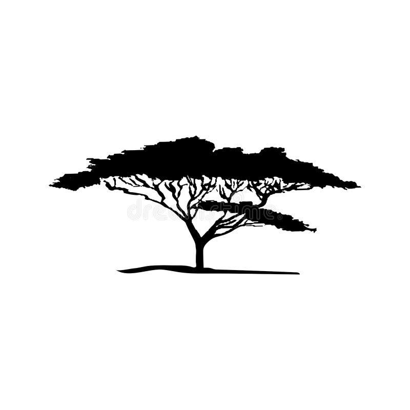 金合欢树传染媒介剪影  免版税库存照片
