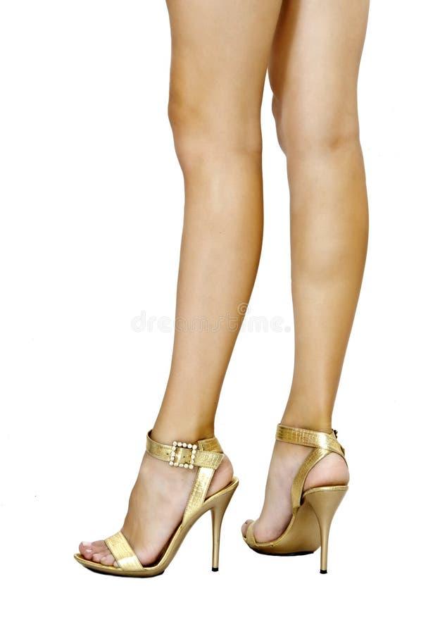 金夫人行程长期完善性感的鞋子 免版税库存图片