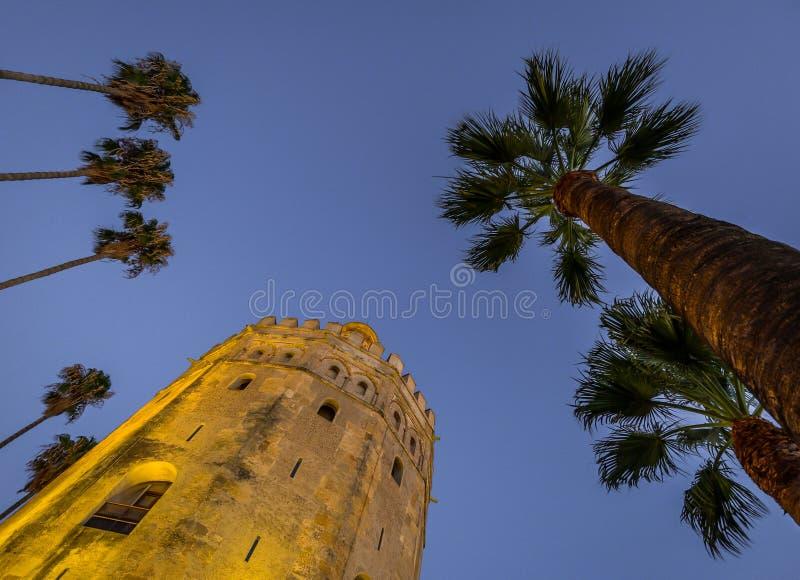 金子塔在塞维利亚-西班牙 库存图片