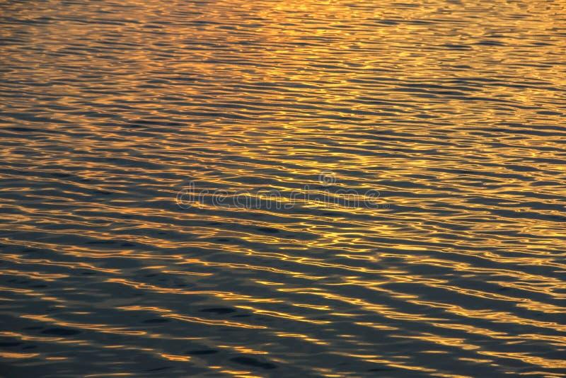 金子太阳光发光在波纹海波浪的,抽象纹理背景 免版税库存图片