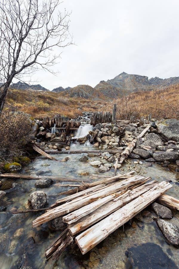 金子摇摄的小河水坝 免版税库存照片