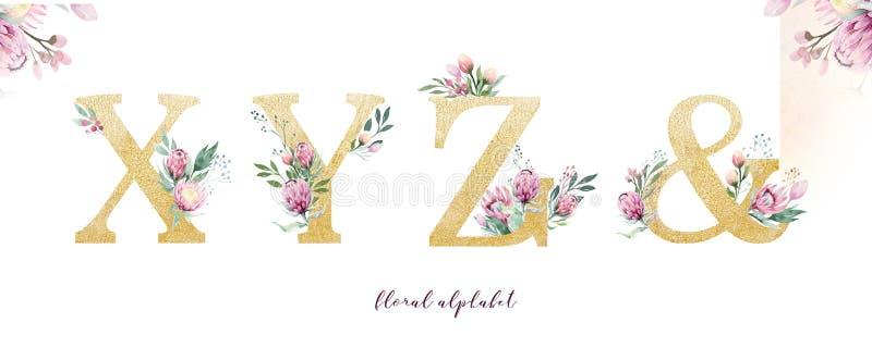 金子闪烁信件字母表 被隔绝的金黄按字母顺序的字体和数字在白色背景 花卉婚姻的字体文本 免版税库存照片