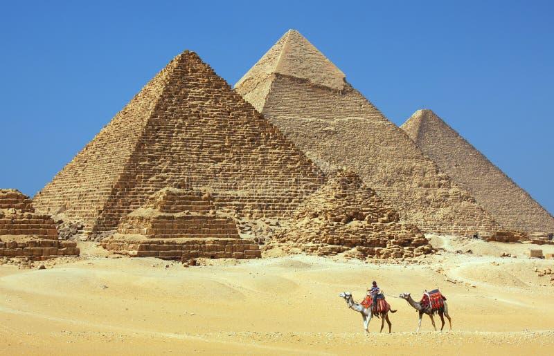 金字塔在埃及 库存照片