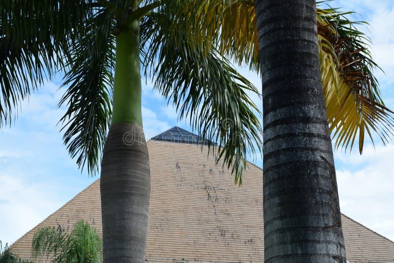 金字塔在有棕榈树的佛罗里达在前面 免版税库存照片