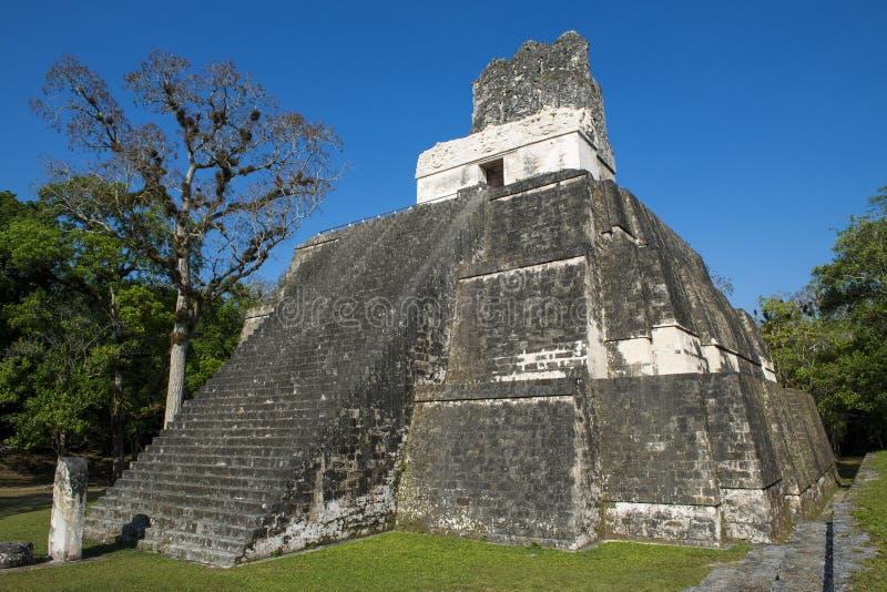 金字塔寺庙II在古老玛雅人市蒂卡尔在危地马拉 免版税库存图片
