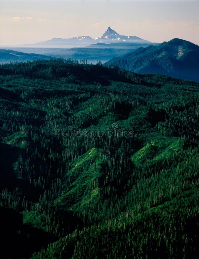 从金小山在日出,登上杰斐逊原野,喀斯喀特山脉,俄勒冈的三指杰克 免版税库存照片