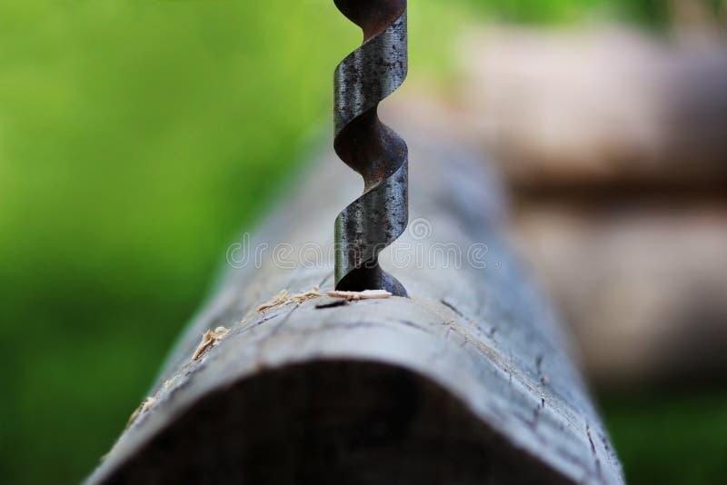 金属做的孔螺旋钻子在日志,当装配一个木制框架和修建房子时 免版税库存照片