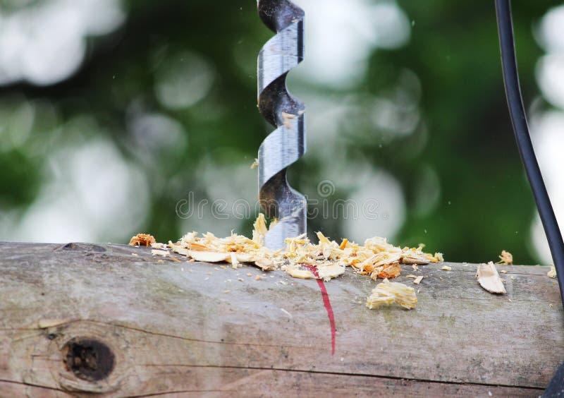 金属做的孔螺旋钻子在日志,当装配一个木制框架和修建房子时 库存照片