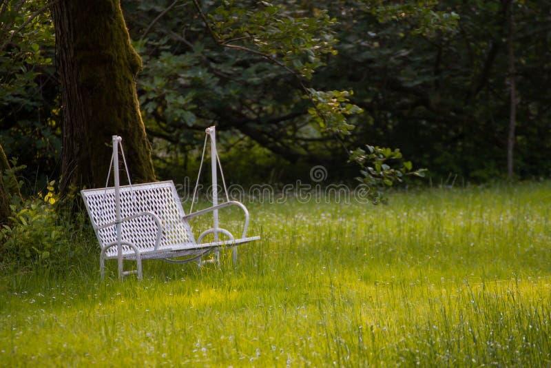 Download 金属化在草坪的白色绘的摇摆长凳 库存图片. 图片 包括有 没人, 室外, 重新创建, 绿色, 长凳, 平安 - 59100907