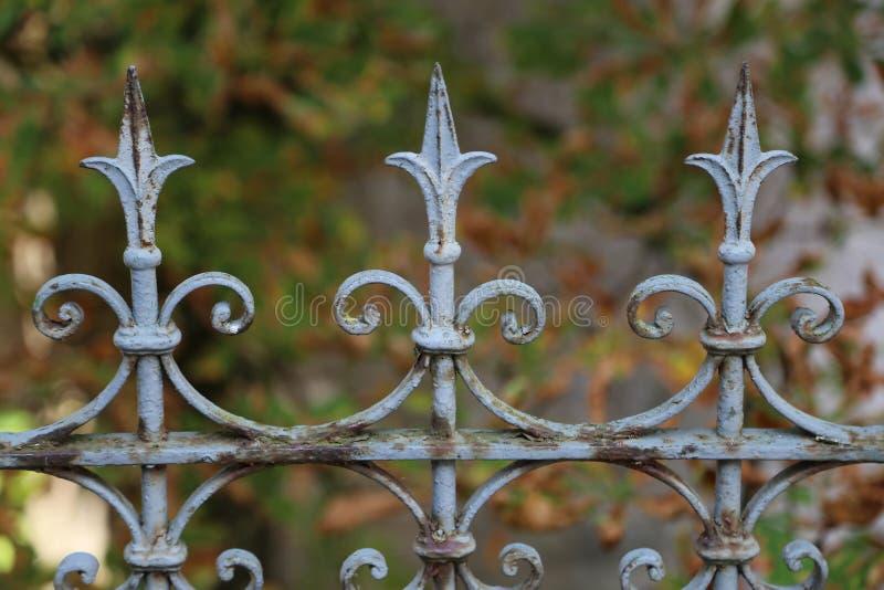 金属卷曲篱芭在公园 库存照片