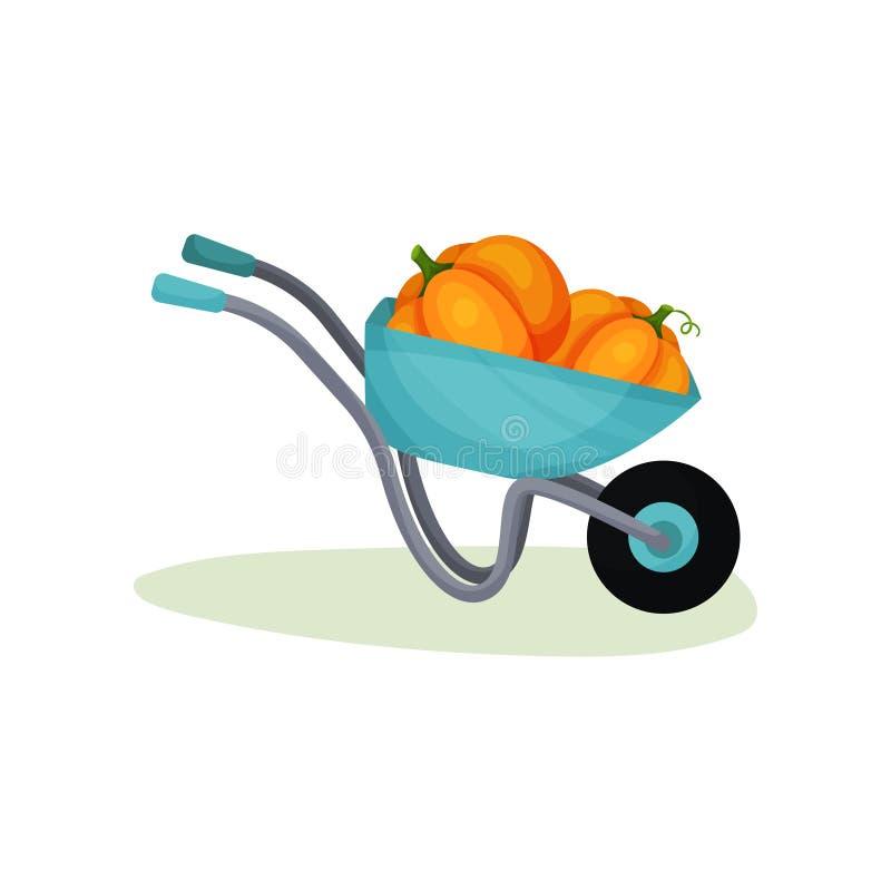 金属独轮车用两个大南瓜 有成熟菜庄稼的庭院推车  健康农产品 平的传染媒介 皇族释放例证