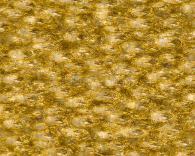 金属背景的金子 库存图片