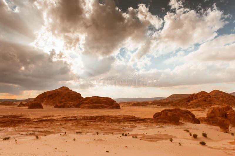 金干旱的沙漠风景西奈,埃及 免版税库存图片