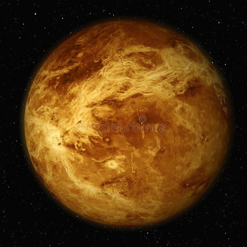 金星 向量例证